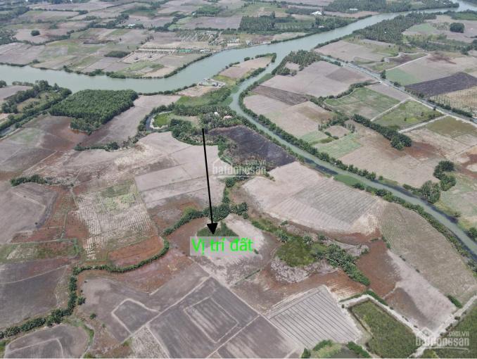 Hàng ngộp cần bán nhanh lô đất tại Phú Đông, gần đường dự phóng, gần đường Cát Lái, giá đầu tư ảnh 0