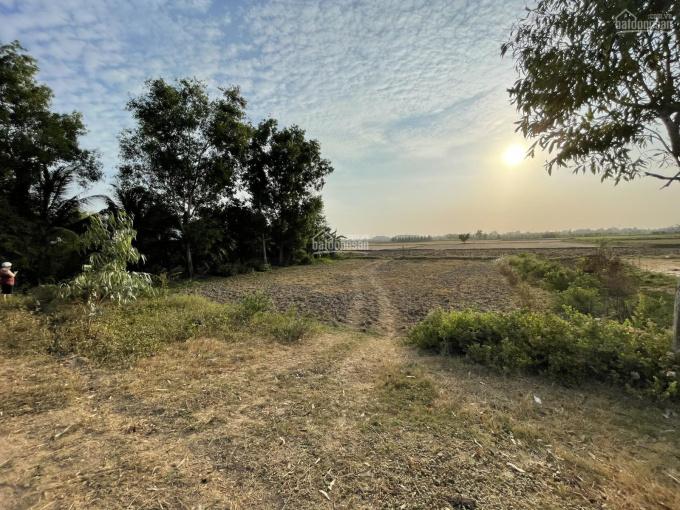 Chính chủ cần bán đất giá rẻ ở Hòa Lợi, Châu Thành, tỉnh Trà Vinh ảnh 0