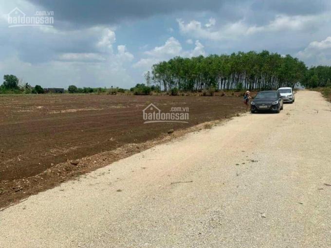 Chính chủ cần bán gấp lô đất 1000m2 xã Bàu Cạn - Long Thành, giá f0, lh: 0865570687 dương nam ảnh 0