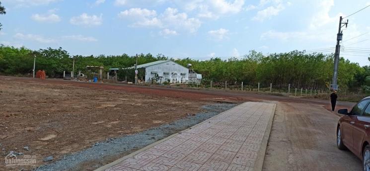 Bán đất Tân Phước, vị trí thuận tiện, giá F0, giá cả mềm so với thị trường ảnh 0
