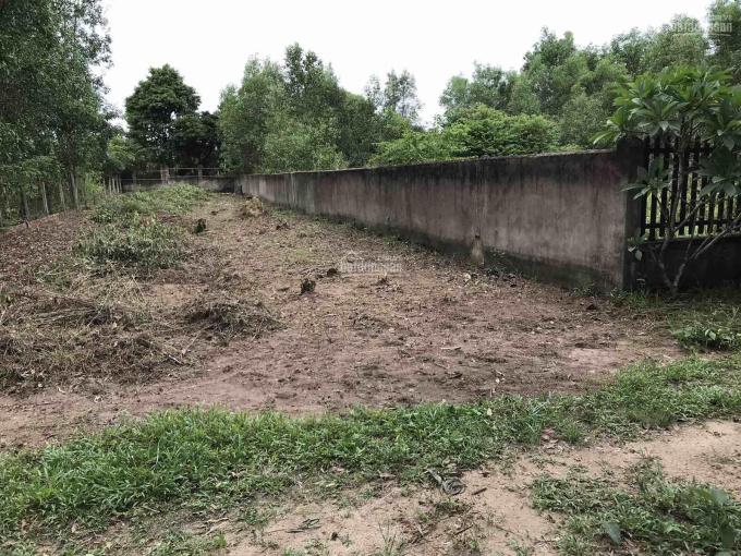 Đất gần mặt tiền Trần Văn Trà, xã Phú Đông, Nhơn Trạch, ĐN, 550m2, giá 4,7 tỷ, LH 0906252644 ảnh 0
