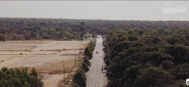 Bán đất để phân lô mặt tiền 270m ngay khu tái định cư Bình Châu, Phước Bửu, giá 499 ngàn/m2 ảnh 0