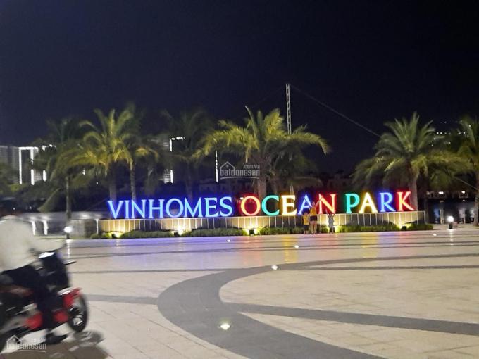 Đơn vị chuyên cho thuê shop chân đế, shophouse dự Vinhomes Ocean Park, Gia Lâm hotline: 0907973377 ảnh 0
