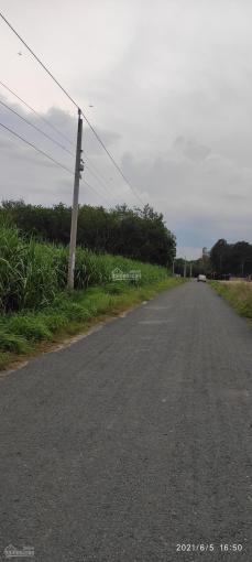 Bán gấp 100 mẫu đất mặt tiền nhựa nhánh đường 792, xã Tân Lập, Huyện Tân Biên, Tây Ninh ảnh 0
