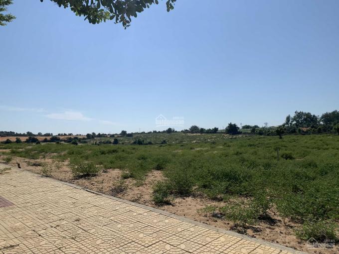 Đất đẹp giá tốt nhất tại Sơn Hải mặt tiền đường Phú Thọ - Mũi Dinh gần siêu dự án Mũi Dinh Ecopark ảnh 0