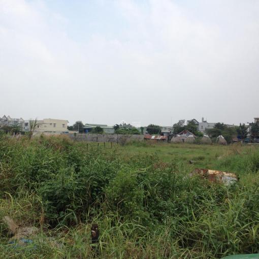 Bán đất thổ cư lớn (19.789.3m2)Mặt tiền, gần đường Nguyễn Văn Bứa ảnh 0