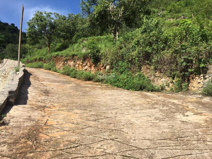 Bán 1,1ha ngay thị trấn Mộc Châu có sẵn 150m2 đất thổ cư giá chuẩn đầu tư ảnh 0