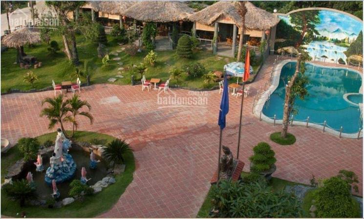 Cần tiền bán gấp khách sạn nghỉ dưỡng 2400m2 tại TP Ninh Bình ảnh 0