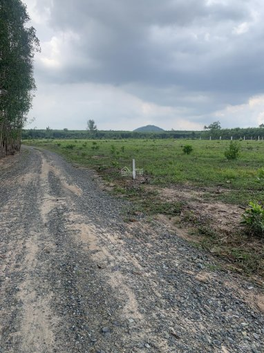 Bán đất đường Đồng Tiến, Ấp 6, xã Xuân Tâm, huyện Xuân Lộc, Tỉnh Đồng Nai ảnh 0