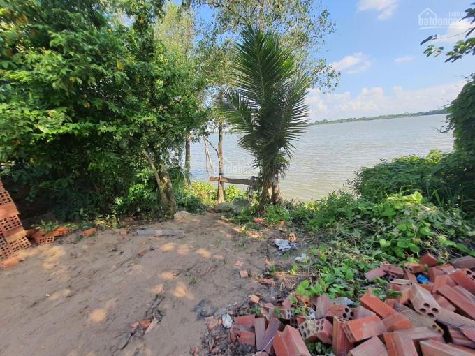 Bán CN 687m2 (12.5x55, cây lâu năm) đường Nguyễn Hương, xã Tịnh Thới, TP Cao Lãnh ảnh 0