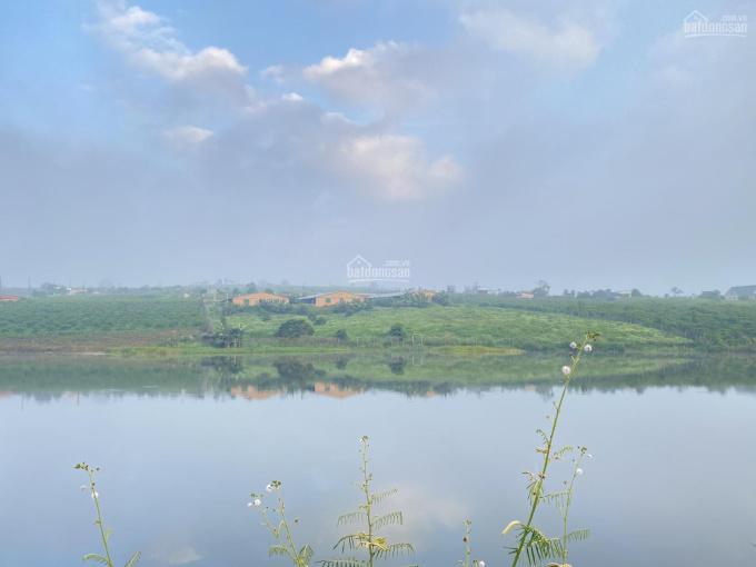 Bán gấp gần 1,1 ha đất chính chủ sở hữu 100m mặt hồ Phúc Thọ (Liên hệ: 0936003676) ảnh 0