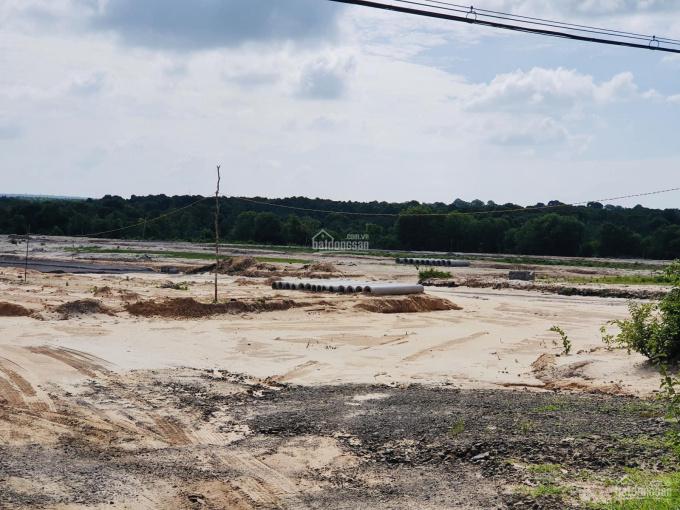 Bán đất mặt tiền gần 300m2 ngay khu tái định cư Bình Châu Phước Bửu, giá 499 ngàn/m2 ảnh 0