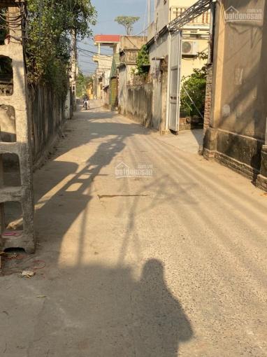Bán mảnh đất 41m2 ở Thanh Oai, Hà Nội ảnh 0