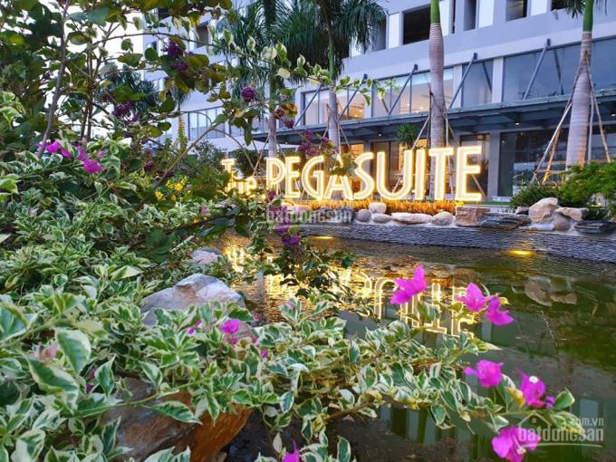 Bán gấp căn hộ The Pegasuite, giá mới cập nhật, căn 2PN, 3PN, giá tốt, sổ hồng trao tay, NTCC ảnh 0