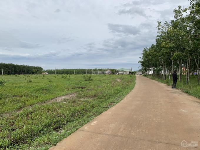 Bán gấp 2 sào đất ngay đường tỉnh 42m, DT: 2.250m2 giá 480tr, liền kề KCN, sổ hồng sẵn ảnh 0
