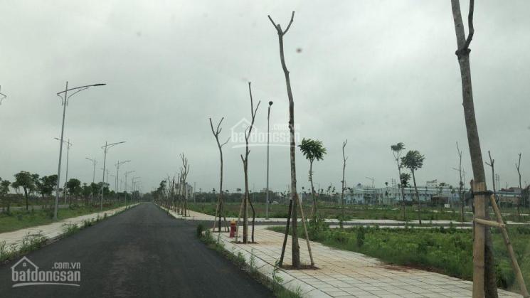 Hot đầu tư có lãi ngay đất nền phân lô Tiền Hải Center City, chiết khấu cao. LH: 0968452627 ảnh 0
