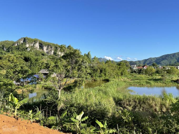 Bán lô đất 3.800m2 có 400m2 thổ cư tại Mường Sang cực đẹp, giá rẻ ảnh 0