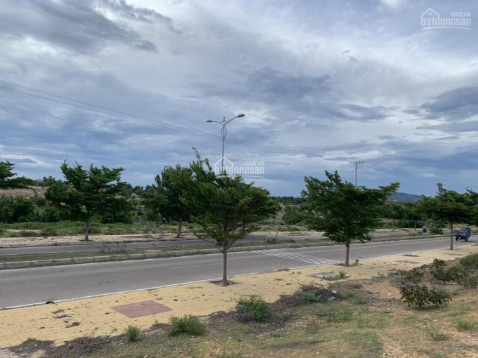 Đất đẹp tại Mũi Dinh, Sơn Hải mặt tiền đường lớn, diện tích 37.619m2, giá 540tr/1000m2 ảnh 0