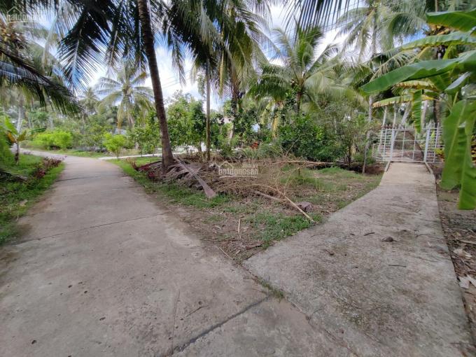 Chính chủ bán gấp 2 lô đất giá rẻ sổ đỏ đầy đủ xã Sơn Phú, Huyện Giồng Trôm, Bến Tre ảnh 0