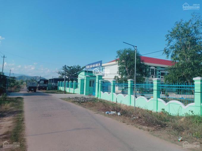 Chính chủ cần bán đất biệt thự vườn Nam Vân Phong ảnh 0