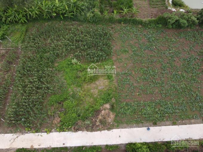 Bán vườn 10890m2 xã Lang Minh, huyện Xuân Lộc, Đồng Nai ảnh 0