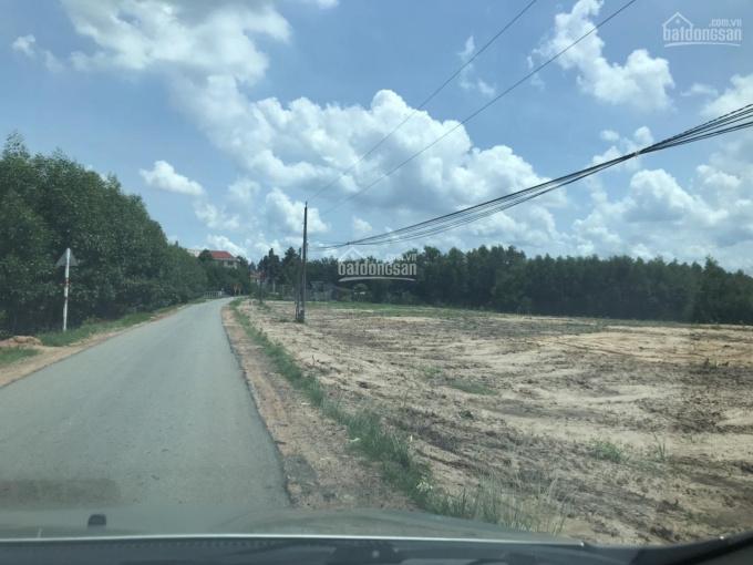 Cần tiền Bán gấp 1890m2 lô đất hiếm tại xã Phước Bình, Long Thành ảnh 0