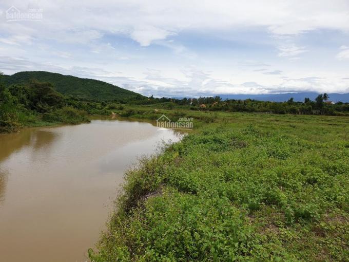 Chính chủ cần bán đất vườn cực đẹp Ninh Hưng TX Ninh Hoà ảnh 0