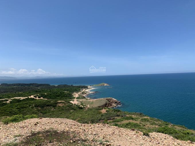 1184m2 đất biển Hòa Thắng, đất được chuyển đổi lên thổ cư, giá rẻ nhất thị trường, sổ nhỏ cực hiếm ảnh 0