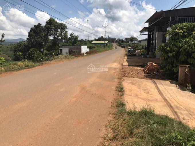 Bán 10m x 58m (580m2) đất mặt tiền thôn 4 xã Lộc Tân - Quy hoạch xã Dambri, TP Bảo Lộc, Lâm Đồng ảnh 0