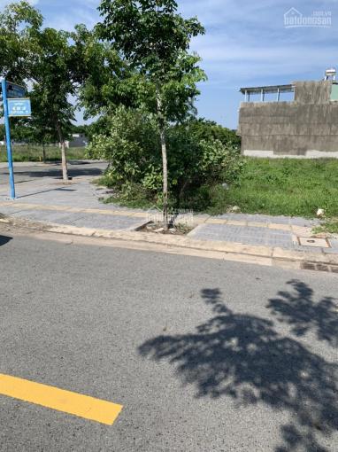 Cần bán gấp đất 2 mặt tiền nhựa, sát bệnh viện TP Bà Rịa Vũng Tàu - liên hệ 0917963279 ảnh 0