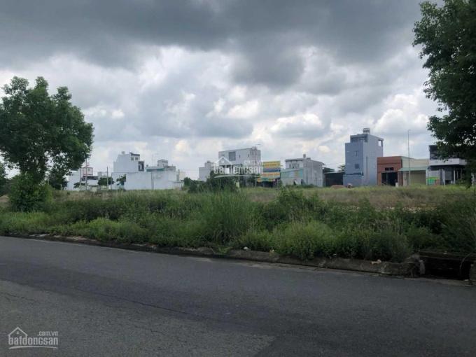 Bán đất đường Trần Đại Nghĩa 115m2, giá 1 tỳ 560 triệu, thuận tiện kinh doanh ảnh 0