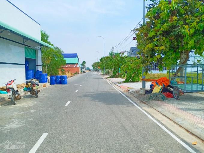 Cần bán lô đất tái định cư Tân Hòa, sát QL 51. Ngay ngã ba Hội Bài - Châu Pha, TX Phú Mỹ ảnh 0