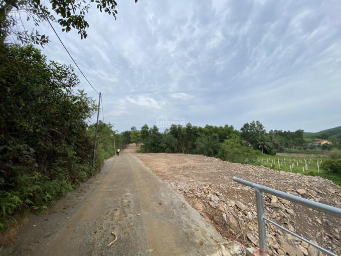 Bán gấp đất Hạ Long giá chỉ 2 triệu/m², đất tổng 2400m2. Liên hệ gấp 0339328288 ảnh 0