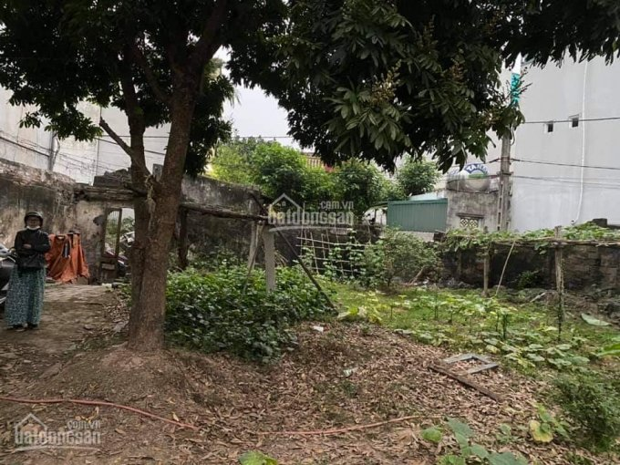 Bán đất Vĩnh Quỳnh, Thanh Trì DT 254m2, mặt tiền 12m, giá 6.6 tỷ. Lô góc 2 thoáng, đầu tư chia lô ảnh 0