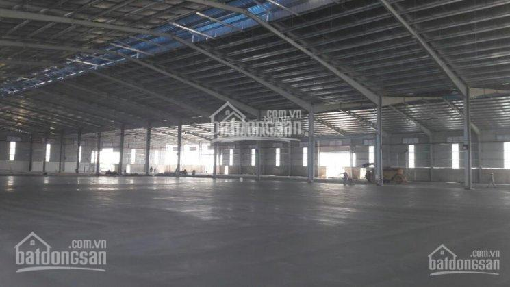 Kho xưởng cho thuê Tân Túc, Bình Chánh, diện tích 20.000m2 (2ha), giá 70.000đ/2m ảnh 0