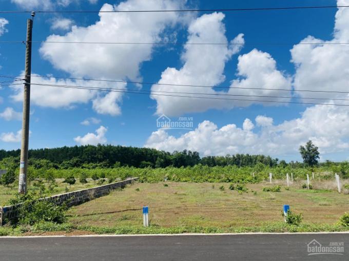 Bán đất mặt tiền Phan Chu Trinh - TT Đất Đỏ - BRVT ngay TL52 1,15 tỷ - 176 m2 ảnh 0