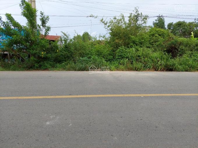 Bán đất mặt tiền đường nhựa Ba Sa, xã Phước Hiệp, DT 213.5m2, giá 2 tỷ 800 ảnh 0