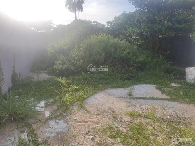 Bán đất đường Nguyễn Văn Hoài, 455m2 (120m2 thổ cư), 3 tỷ 5, Tân An Hội, Củ Chi 0901199686 ảnh 0
