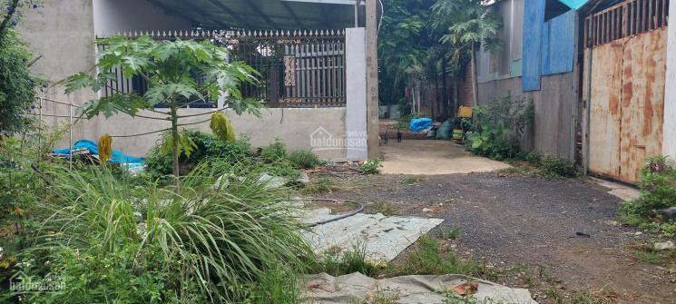 Bán gấp lô đất 137m2 xã Quảng Tiến, Trảng Bom, Đồng Nai, giá 1,3 tỷ, diện tích 6x23m ảnh 0
