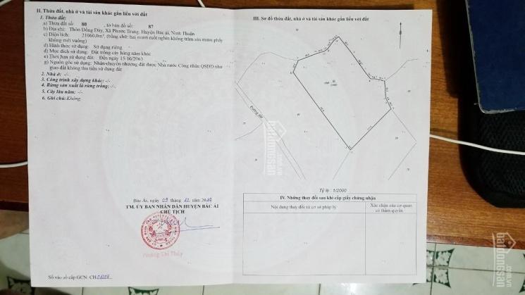 Tôi chính chủ cần bán đất lâm nghiệp lâu năm ngay trung tâm huyện Bác Ái. LH 0908339632 ảnh 0
