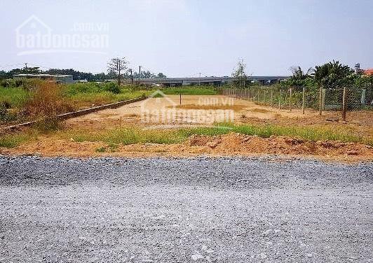 Chồng tôi chuyển công tác về Sơn La nên bán đất gần KCN Becamex Chơn Thành để gia đình ra Bắc, SHR ảnh 0