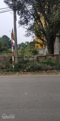 Bán nhanh đất mặt đường chính TL 416, cách các trường mầm non, trường THCS Kim Sơn 100m ảnh 0