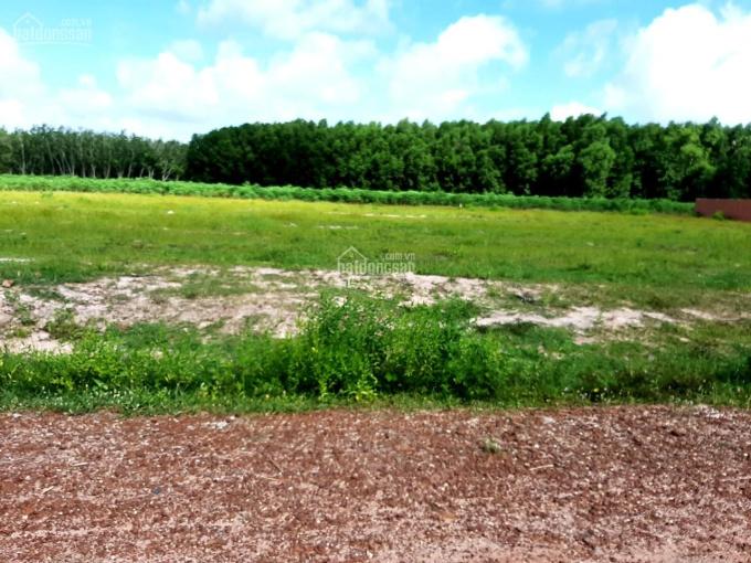 Chính chủ cần bán đất vị trí đẹp ở tỉnh Tây Ninh ảnh 0