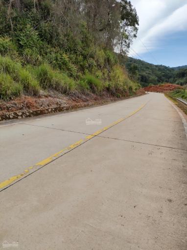 Bán vườn trồng cây cà phê 6,5 sào cách đường Tỉnh lộ 722 chỉ 50 mét ở xã Đưng Knớ, huyện Lạc Dương ảnh 0