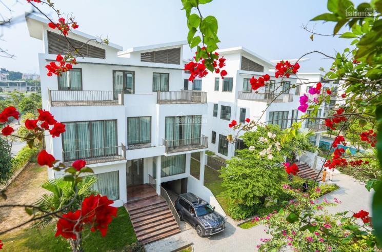Tổng hợp quỹ căn biệt thự Khai Sơn Hill vị trí đẹp, giá hợp lý nhất thị trường. LH: 0968966638 ảnh 0