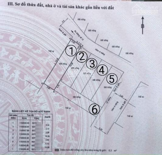 Bán đất thổ cư xây dựng tự do đường 12 Trần Não hẻm 37 sau DA Caric LH 0906 486 506 A TÁC ảnh 0