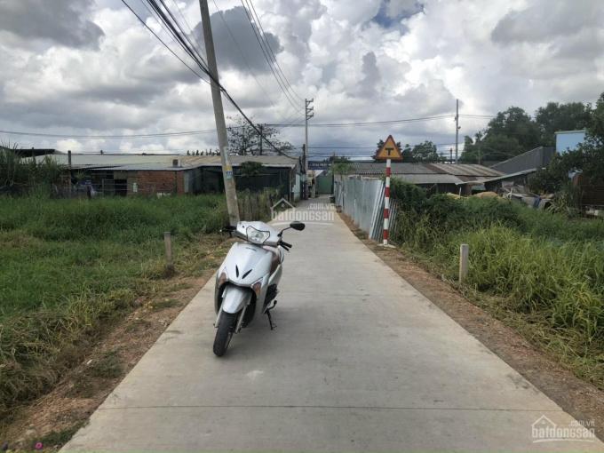 1680m2 thổ cư đường Hương Lộ 11, Xã Quy Đức, Bình Chánh ảnh 0