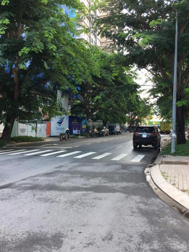 Bán gấp gấp căn biệt thự Cityland-99 Nguyễn Thị Thập-P.Tân Phú -Q.7 giá 32.5 tỷ LH 0914631379 Trúc ảnh 0