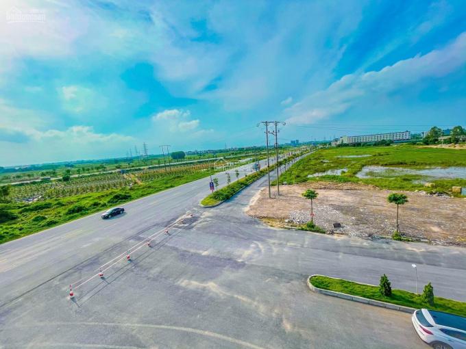 Cần bán một số ô đất chia lô giá mềm thuộc khu ĐTM phía Nam, TP Hải Dương gần Bệnh viện Nhi Tỉnh ảnh 0