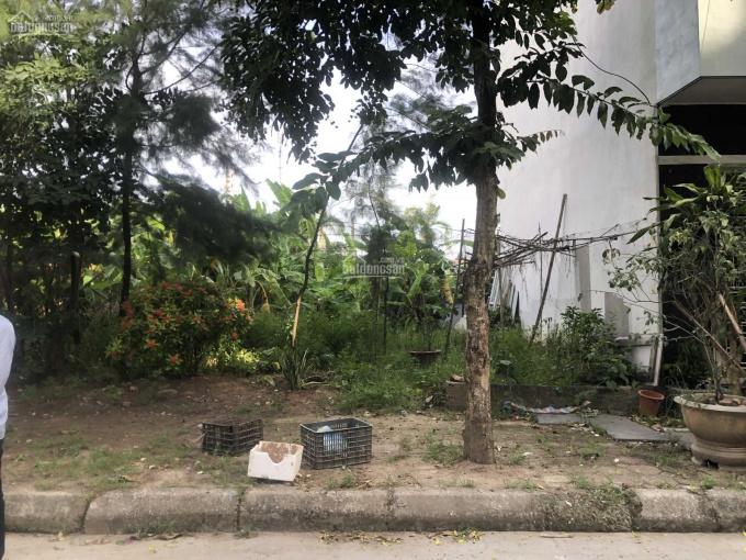 Cần bán lô đất mặt đường Huy Cận, gần ngay bệnh viện 700 giường đang xây dựng ảnh 0